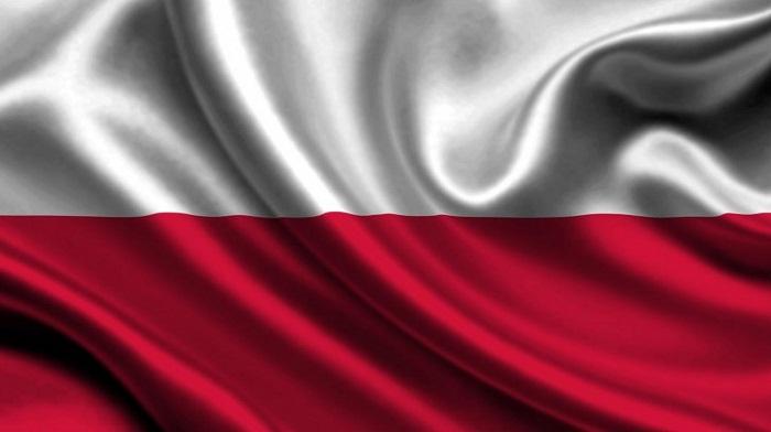 Раскрутка и продвижение в Польше