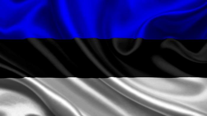 Раскрутка и продвижение в Эстонии